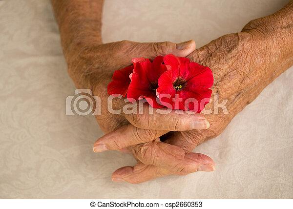 folded hands elder - csp2660353
