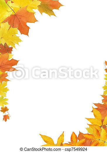 folhas, borda, outono - csp7549924