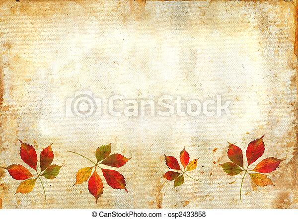folhas, grunge, fundo, outono - csp2433858