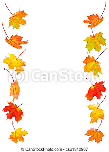 folhas, maple, fundo, outono - csp1312987