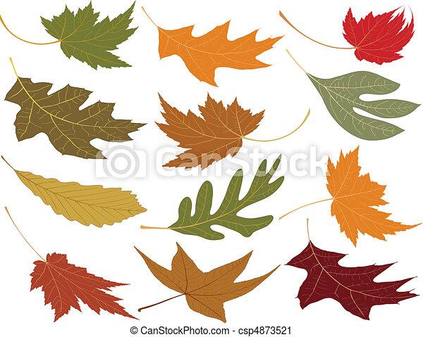 folhas, soprado, queda vento - csp4873521
