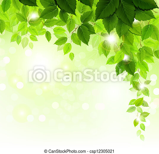 folhas, verde - csp12305021