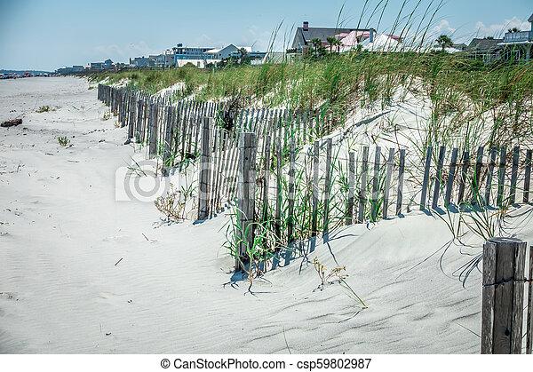 folly beach charleston south carolina on atlantic ocean - csp59802987