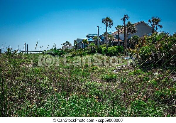 folly beach charleston south carolina on atlantic ocean - csp59803000