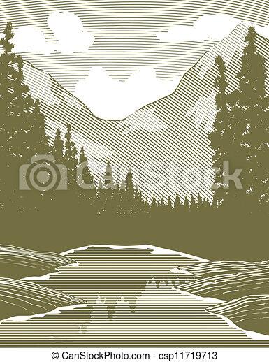 folyó, fametszet, vadon, színhely - csp11719713