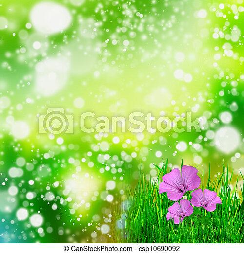 fond, fleurs, vert, naturel - csp10690092