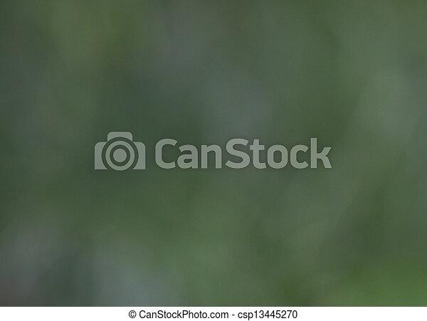 fond, vert - csp13445270