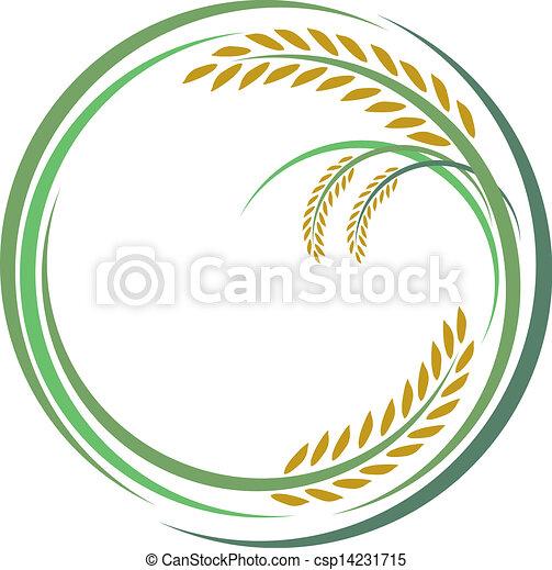 Diseño de arroz sobre fondo blanco - csp14231715