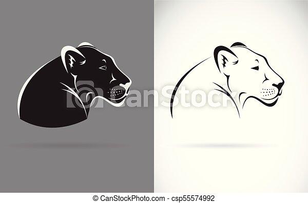 Fondo gris, pantera, editable, animals., fondo., vector, negro ...