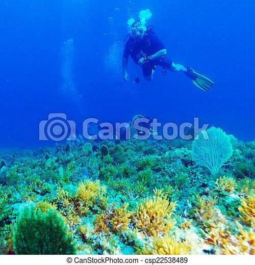 Silueta de buceo cerca del fondo del mar - csp22538489