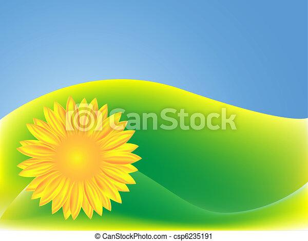 fondo verde, girasol - csp6235191
