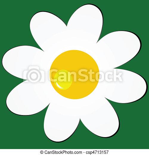 Daisy en el fondo verde - csp4713157