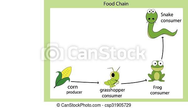 food chain rh canstockphoto com Fish Food Chain food chain clip art/free