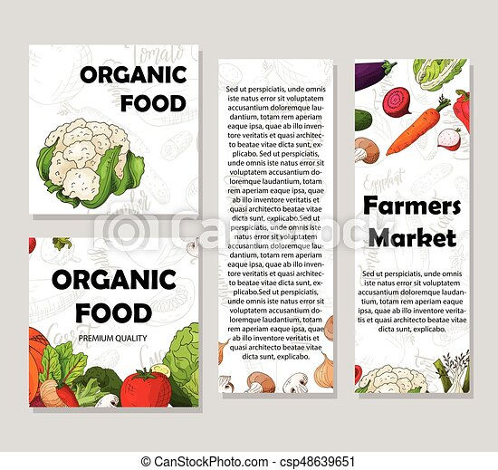 Food design with vegetable. Hand drawn sketch of beet and daikon. Organic fresh product for card or poster design for cafe. Colorful vector illustration - csp48639651
