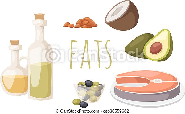 Food fats good high in protein isolated on white avocado, nuts and fish meat vector. - csp36559682