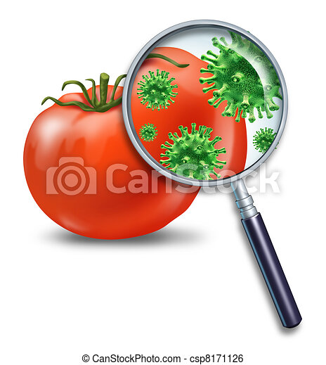 Food safety - csp8171126