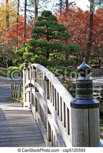 foot bridge in Japanese garden - csp5120593