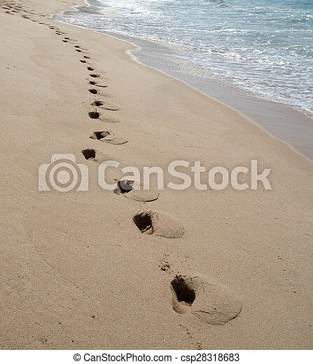 Foot prints on sandy beach - csp28318683
