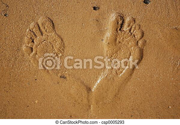 Foot prints - csp0005293