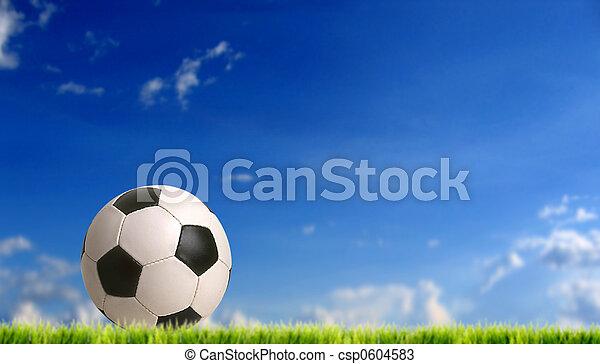 football - csp0604583