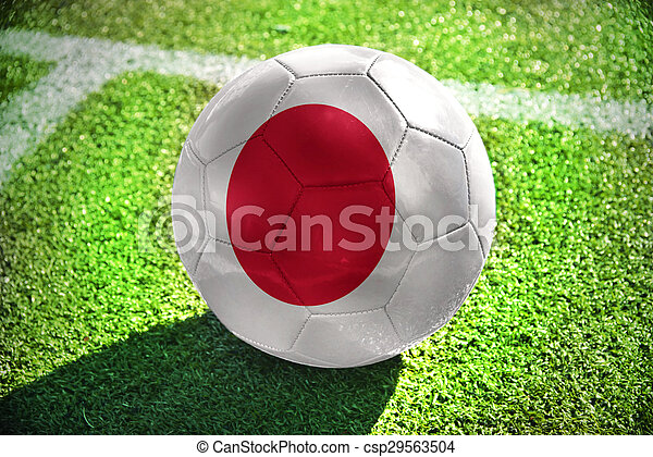 football ball with the national flag of japan - csp29563504