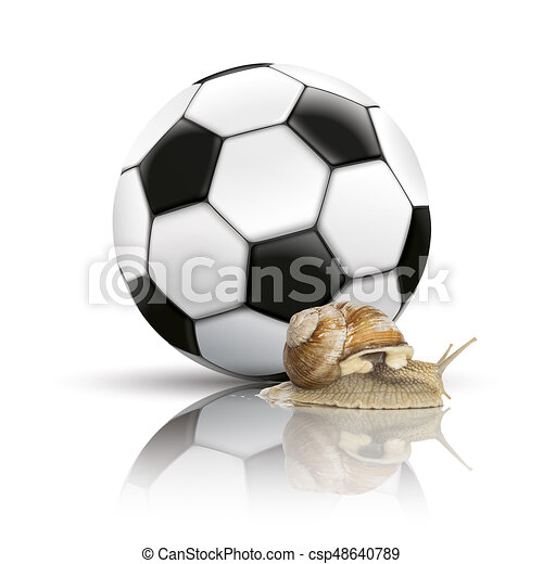Football Mirror Background Snail - csp48640789
