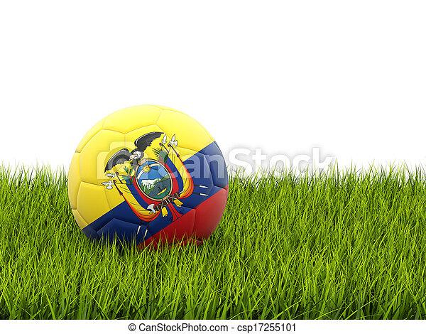 Football with flag of ecuador - csp17255101