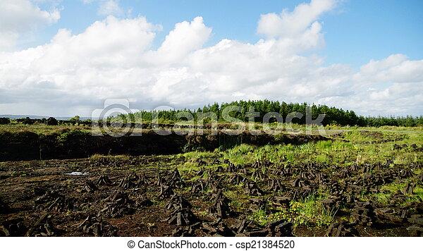 Un terreno pisado en un pantano irlandés - csp21384520