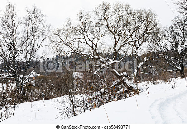 footpath and view of old russian village in winter - csp58493771