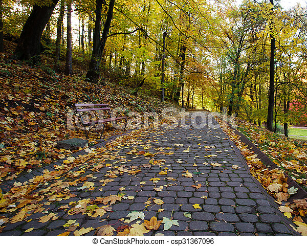 Footpath in the autumn city park strewn with yellow fallen leaves - csp31367096