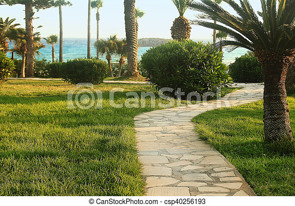 footpath on the beach - csp40256193