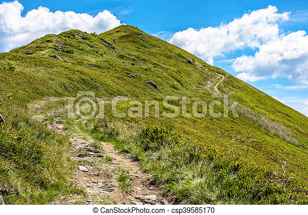 footpath to the mountain top - csp39585170