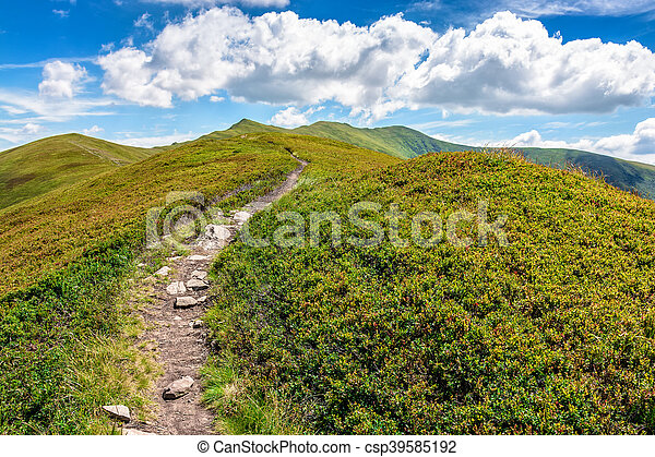 footpath to the mountain top - csp39585192
