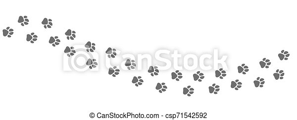 Footpath trail of animal. Dog or cat paws print vector isolated on white background - csp71542592