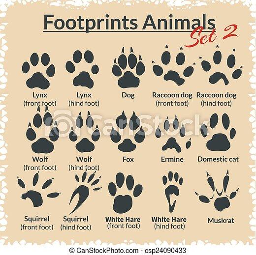 Footprints Animals - vector set. - csp24090433