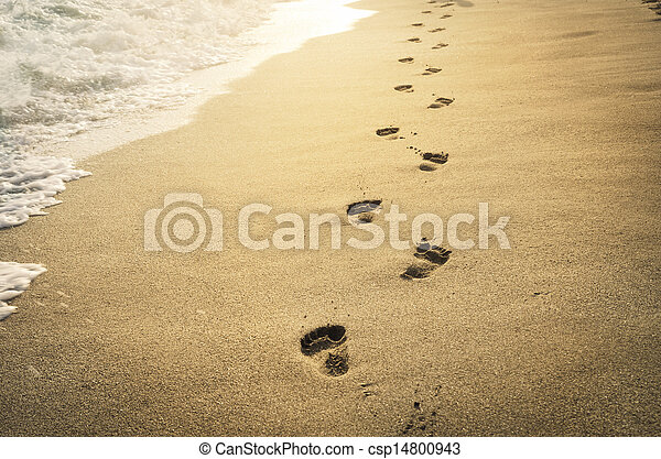 Footprints in the sand - csp14800943