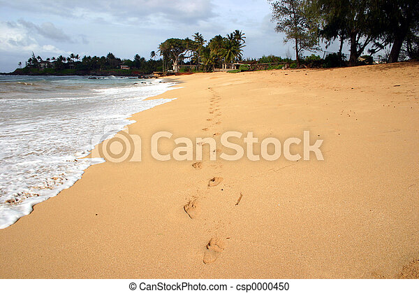 Footprints in the sand - csp0000450