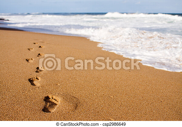 Footprints leading into the sea - csp2986649