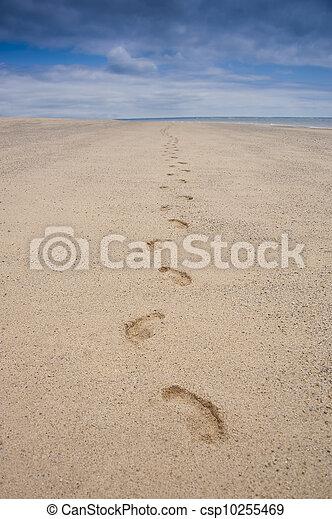 footprints on a beach - csp10255469
