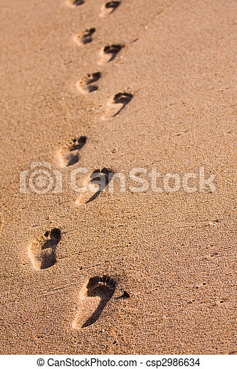 Footprints on the beach - csp2986634