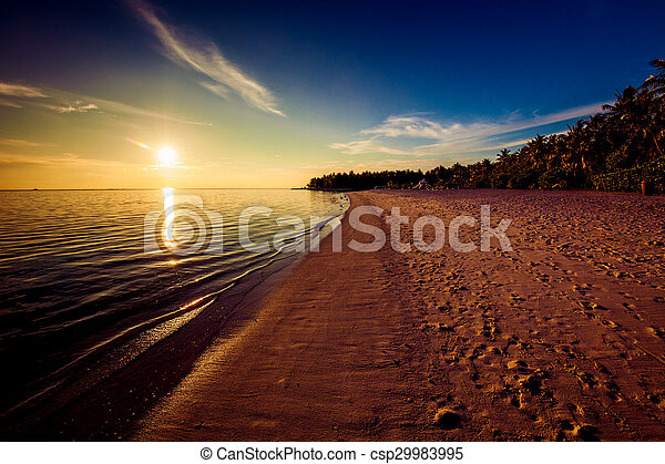 Footprints on the tropical beach at sunset - csp29983995