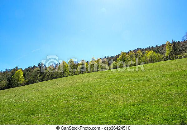 forår, natur - csp36424510
