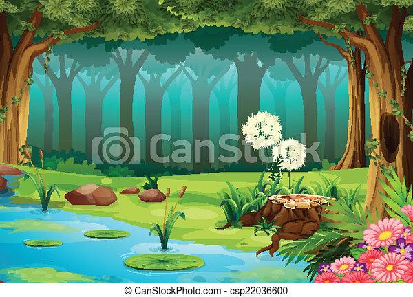 forêt - csp22036600