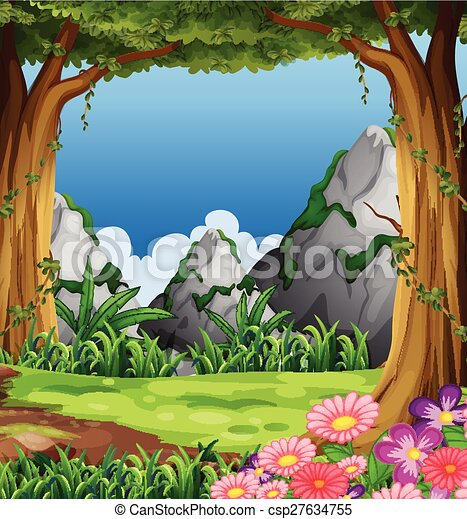 forêt - csp27634755