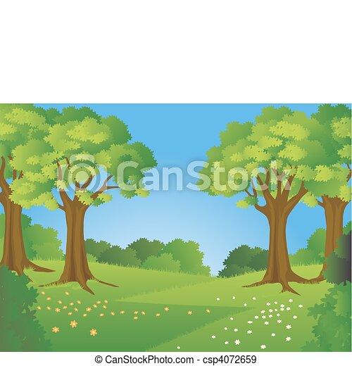 forêt - csp4072659