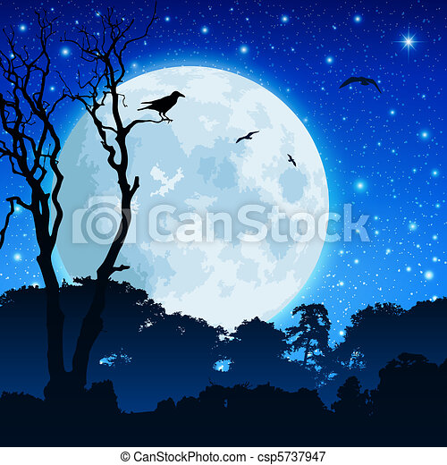 forêt, paysage, lune - csp5737947