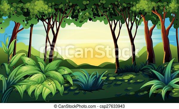 forêt - csp27633943