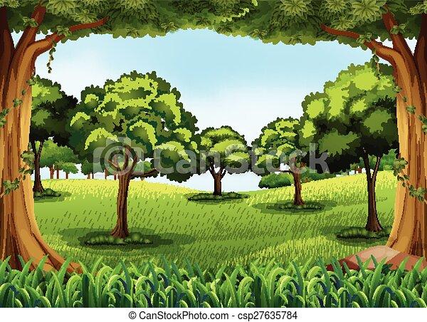 forêt - csp27635784