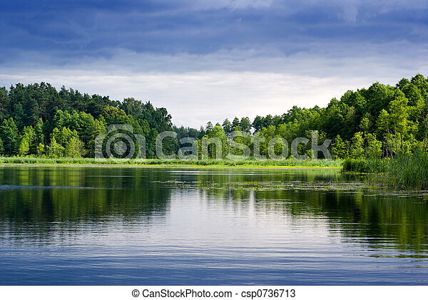 forest., 湖 - csp0736713