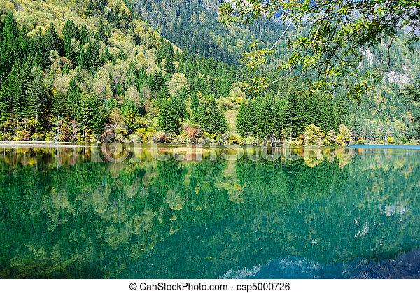 Forest and lake landscape of China jiuzhaigou - csp5000726